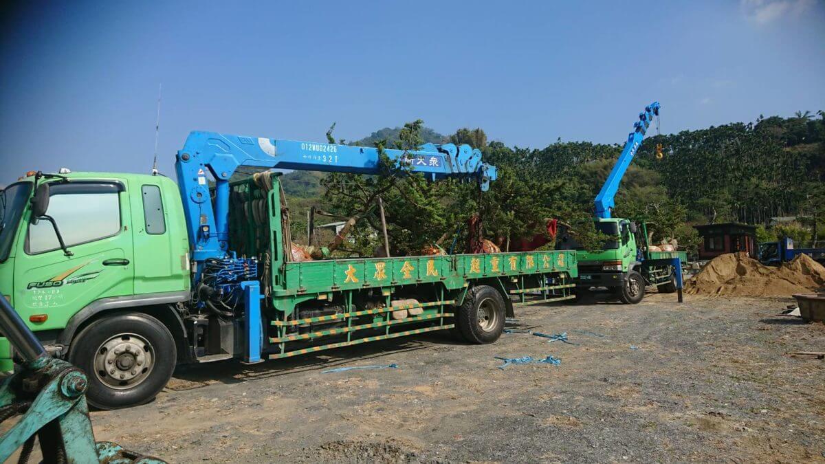 吊卡車 - 五葉松、羅漢松移植
